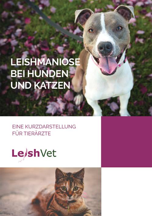Leishmaniose Bei Hunden Und Katzen Leishvet